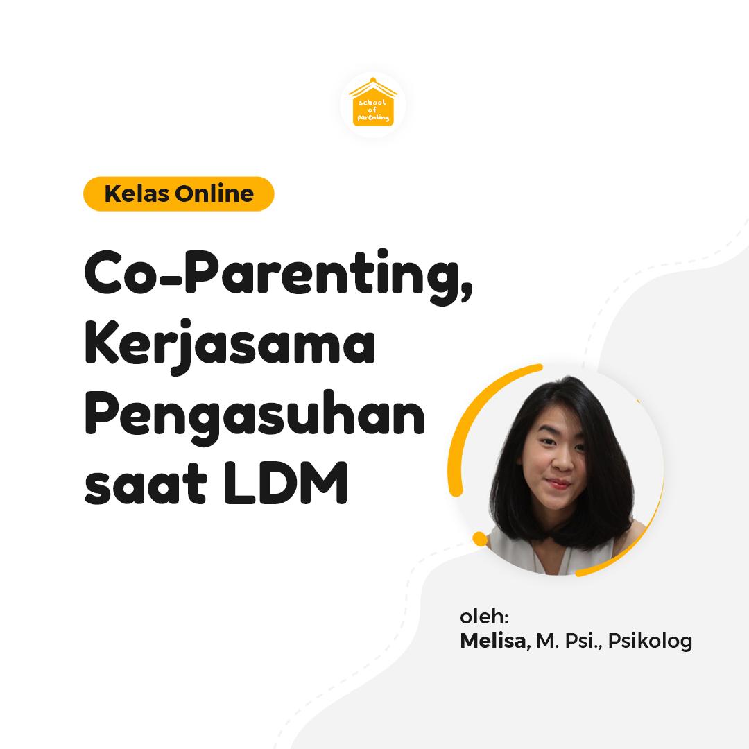 Co-Parenting, Kerjasama Pengasuhan saat LDM